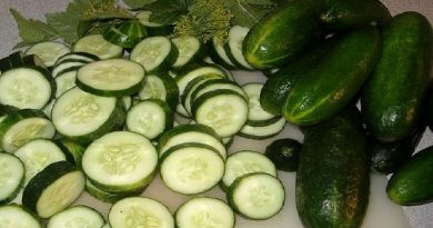 beauty advantages of cosmetic cucumber seed oil 390x205 - Beauty Advantages Of Cosmetic Cucumber Seed Oil